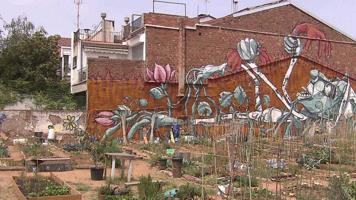 El Escarabajo Verde: arad vecinos