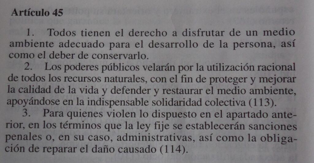 constitucion_art_45